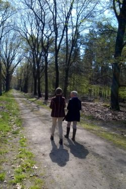 Ervaringen met Loopbaanswitch