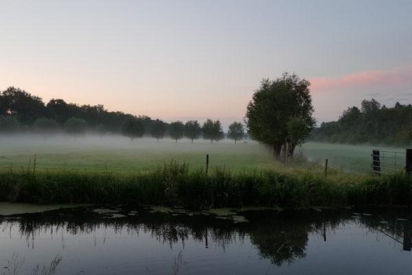Stilte-Wandeling en de effecten van wandelcoaching